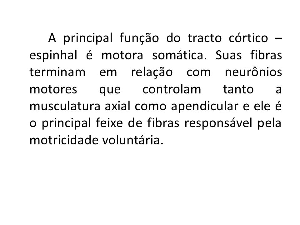 A principal função do tracto córtico – espinhal é motora somática