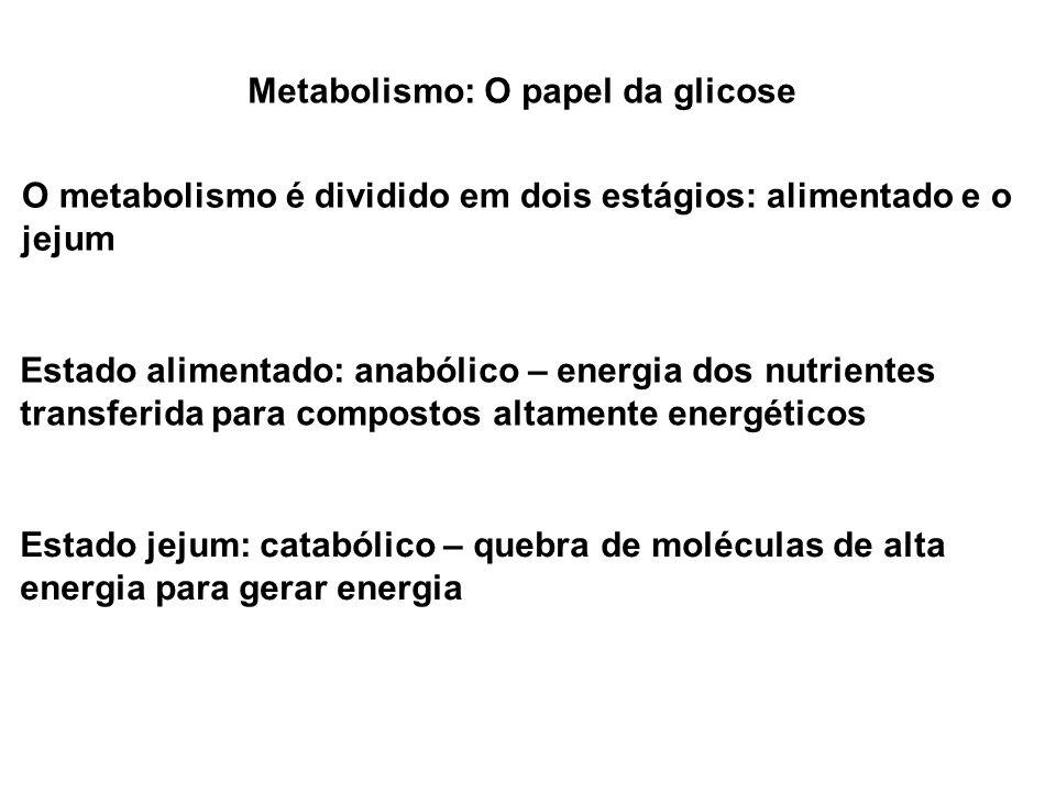 Metabolismo: O papel da glicose