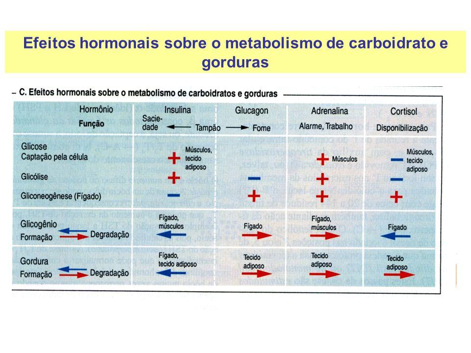 Efeitos hormonais sobre o metabolismo de carboidrato e gorduras