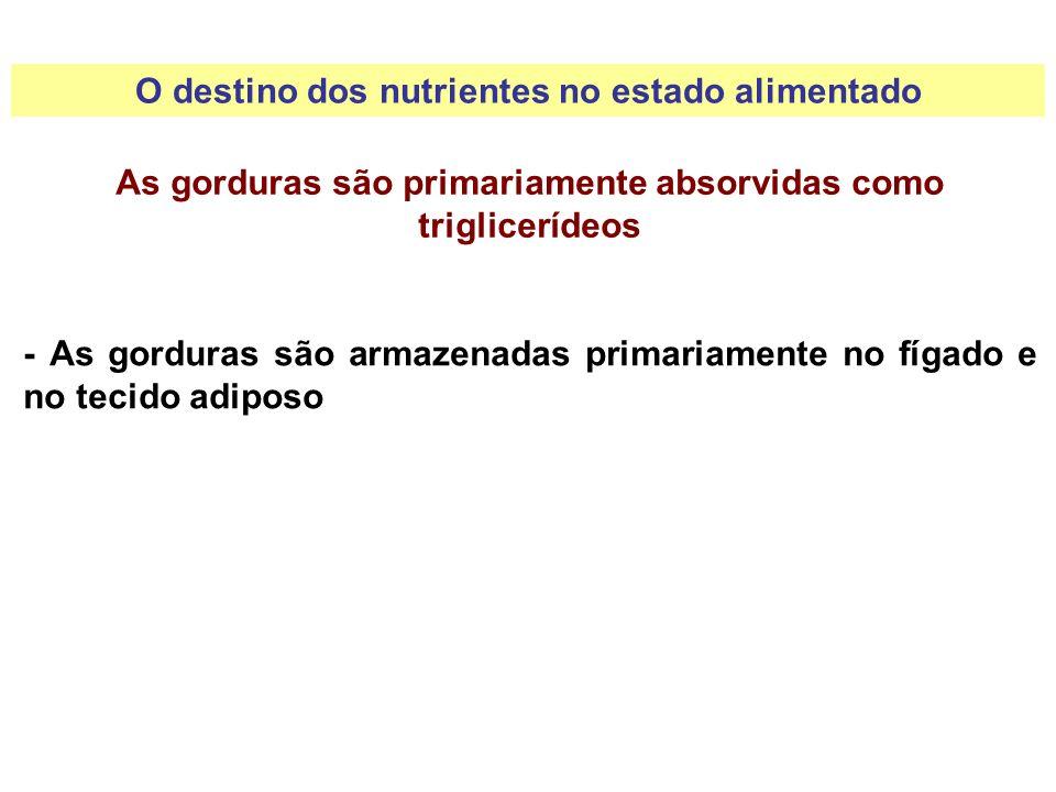O destino dos nutrientes no estado alimentado