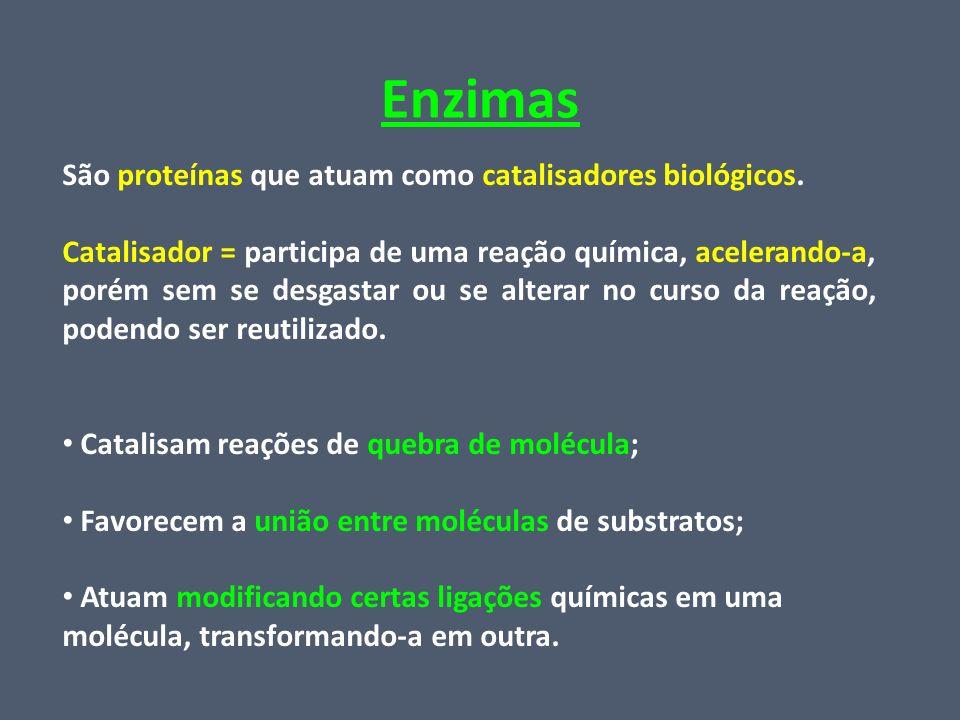 Enzimas São proteínas que atuam como catalisadores biológicos.