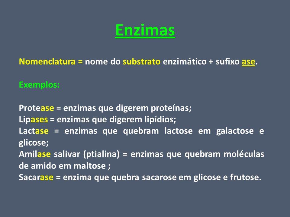 Enzimas Nomenclatura = nome do substrato enzimático + sufixo ase.