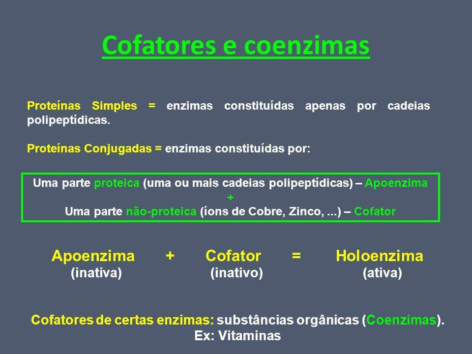 Cofatores e coenzimas Apoenzima + Cofator = Holoenzima