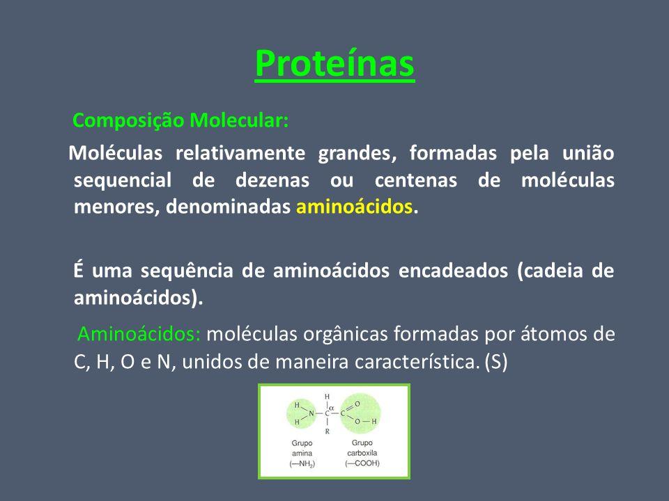Proteínas Composição Molecular:
