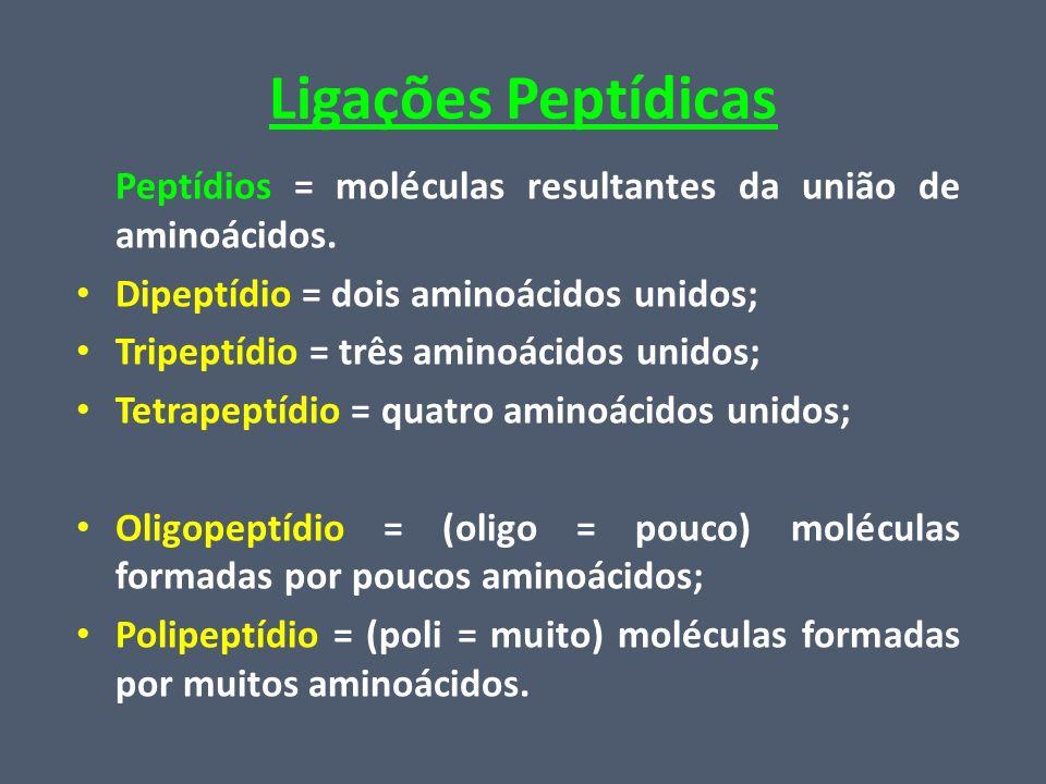 Ligações Peptídicas Peptídios = moléculas resultantes da união de aminoácidos. Dipeptídio = dois aminoácidos unidos;