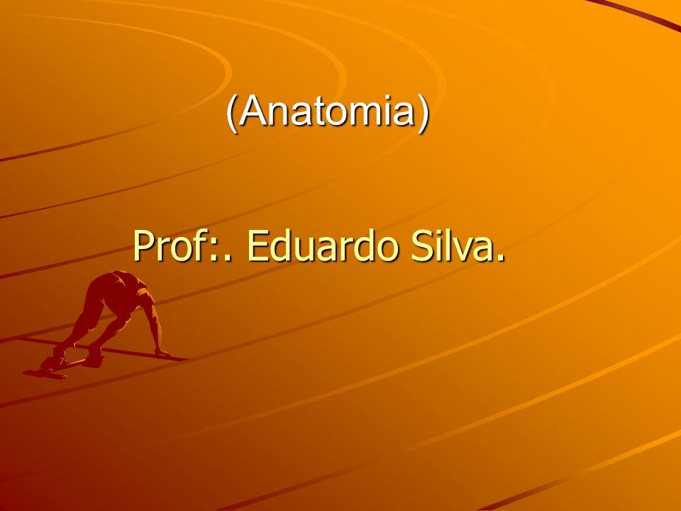 (Anatomia) Prof:. Eduardo Silva.