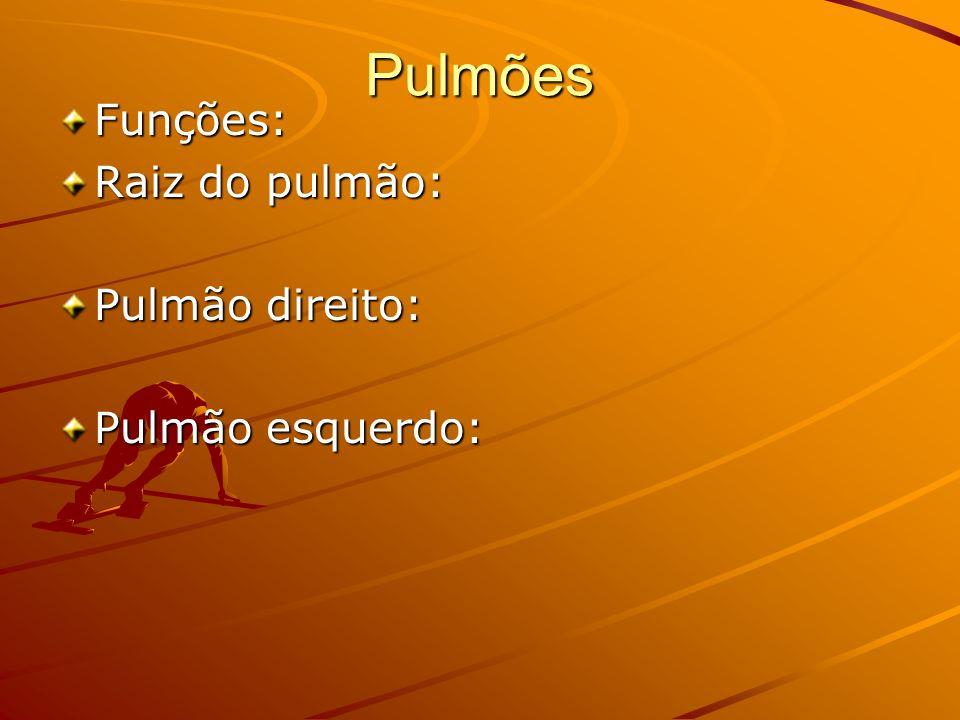 Pulmões Funções: Raiz do pulmão: Pulmão direito: Pulmão esquerdo: