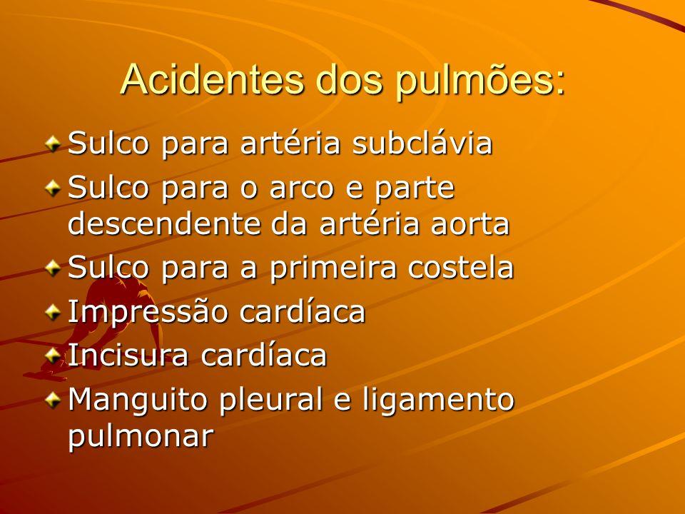 Acidentes dos pulmões:
