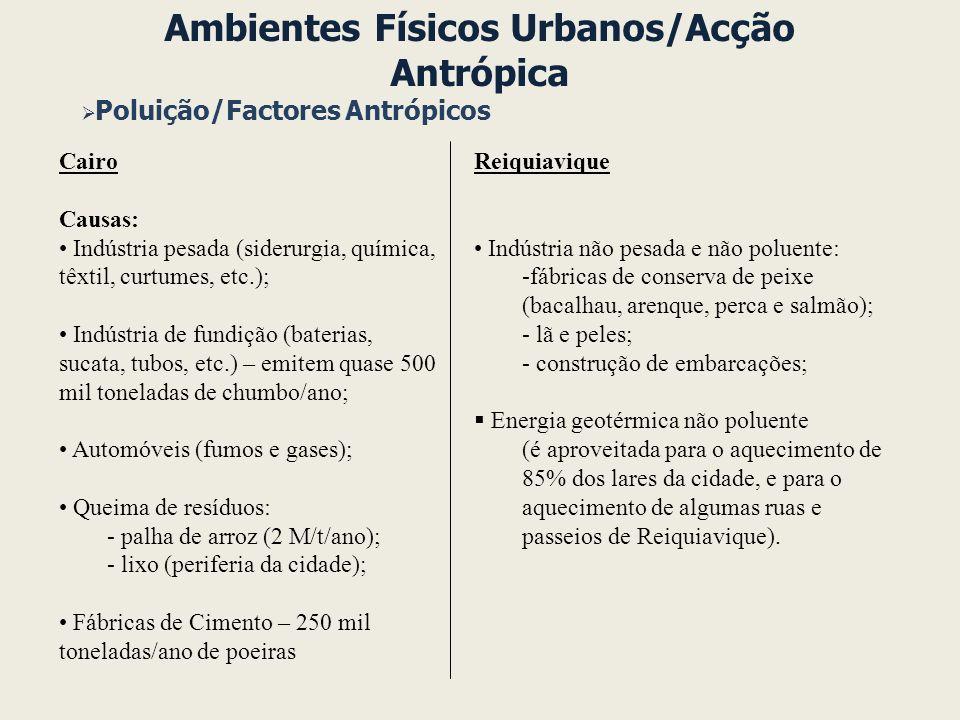 Ambientes Físicos Urbanos/Acção Antrópica