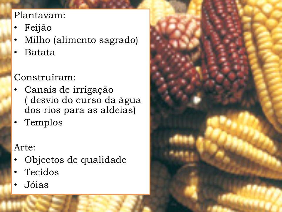 Plantavam: Feijão. Milho (alimento sagrado) Batata. Construíram: