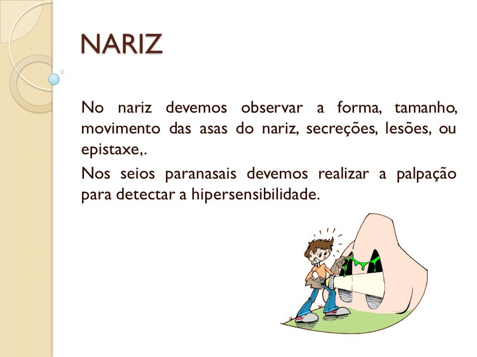 NARIZ No nariz devemos observar a forma, tamanho, movimento das asas do nariz, secreções, lesões, ou epistaxe,.
