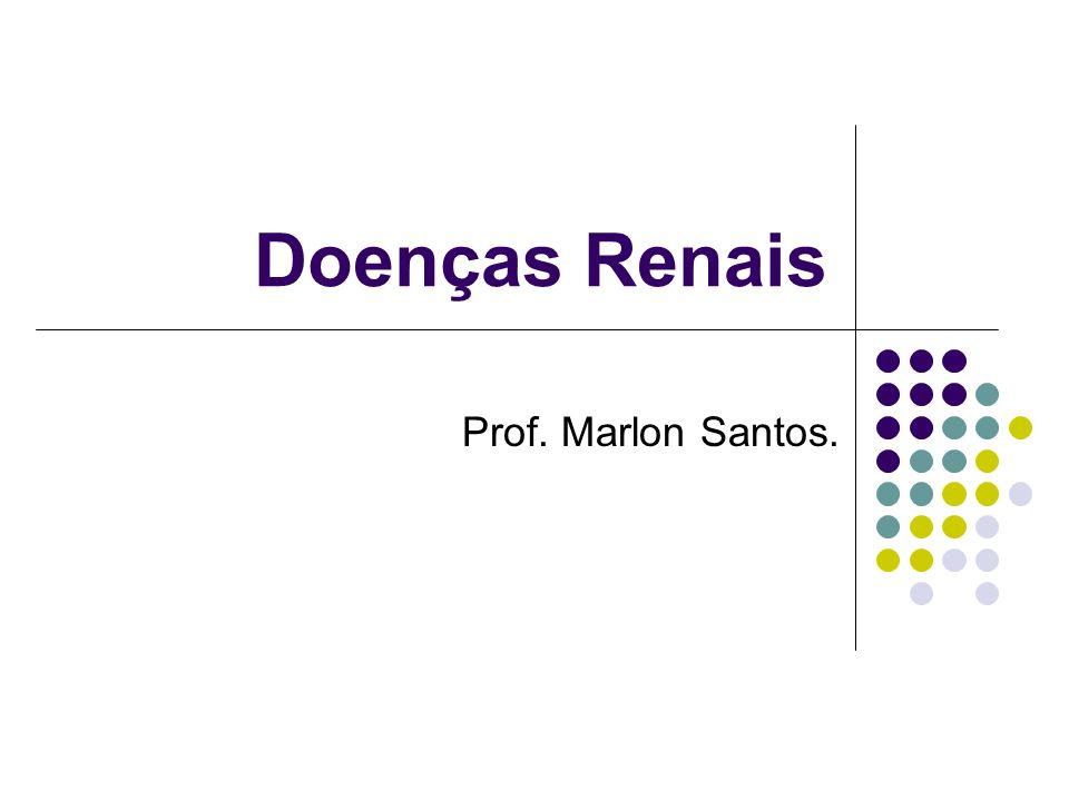 Doenças Renais Prof. Marlon Santos.