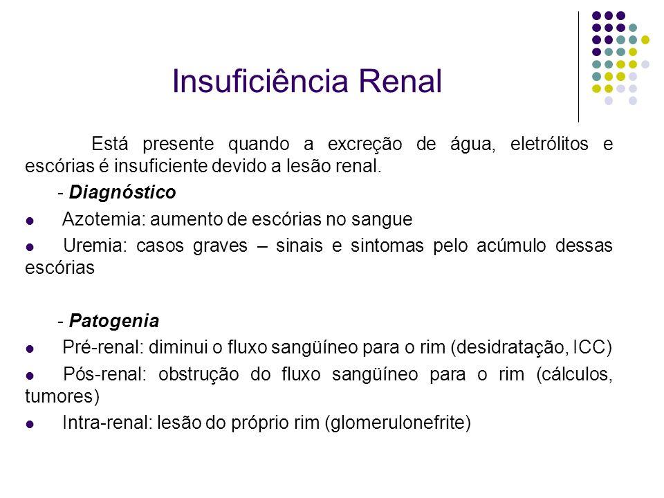 Insuficiência RenalEstá presente quando a excreção de água, eletrólitos e escórias é insuficiente devido a lesão renal.