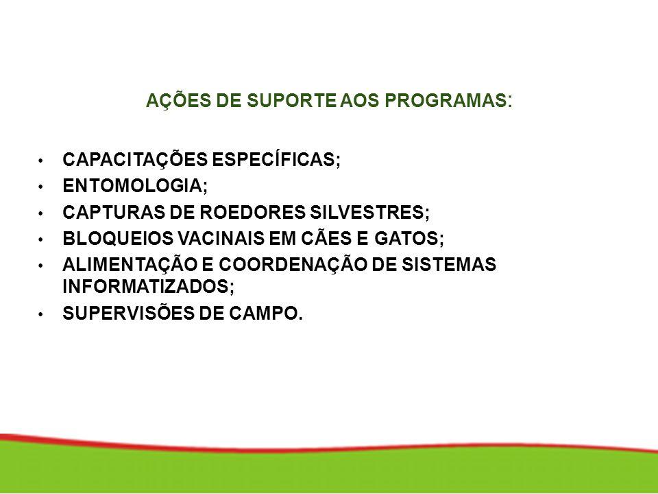 AÇÕES DE SUPORTE AOS PROGRAMAS: