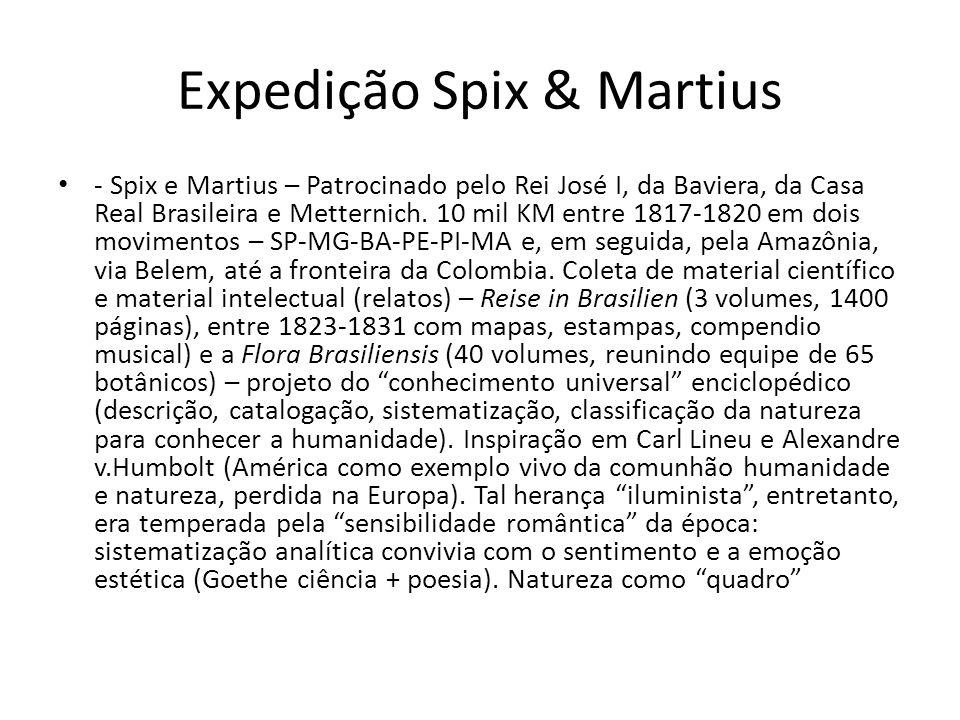 Expedição Spix & Martius