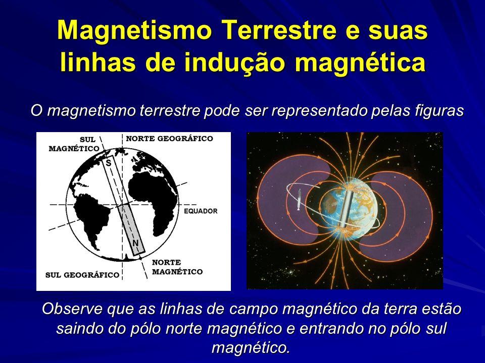 Magnetismo Terrestre e suas linhas de indução magnética