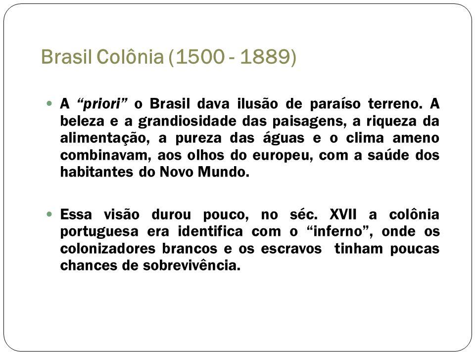 Brasil Colônia (1500 - 1889)