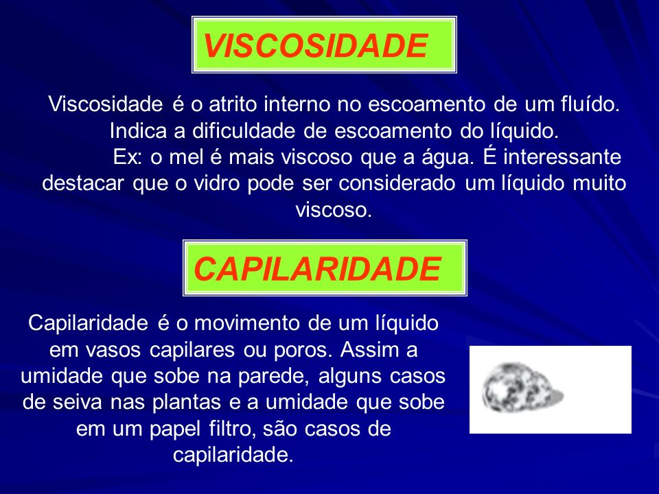 VISCOSIDADE CAPILARIDADE