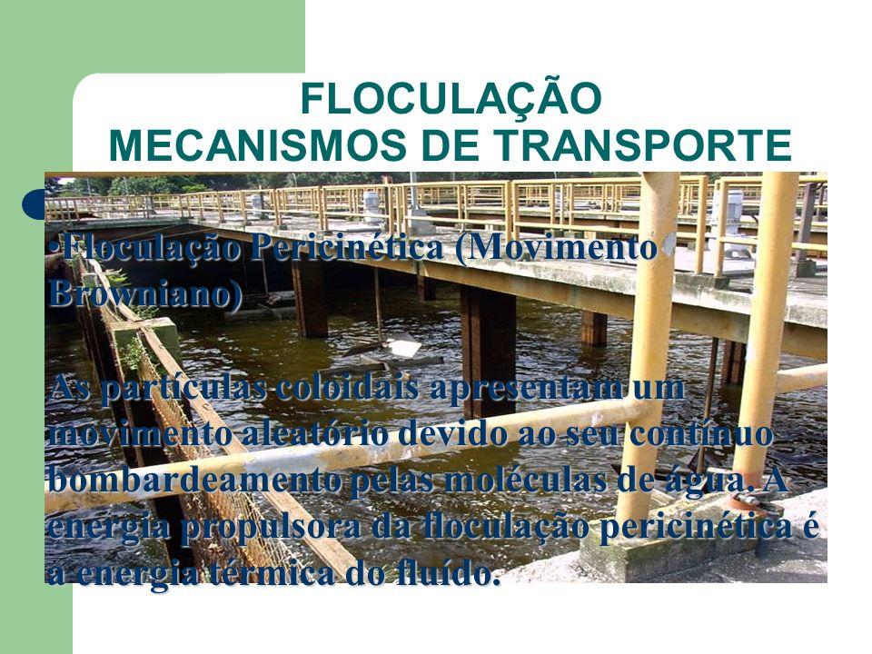 FLOCULAÇÃO MECANISMOS DE TRANSPORTE