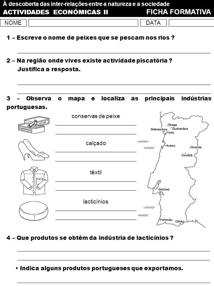 ACTIVIDADES ECONÓMICAS II FICHA FORMATIVA