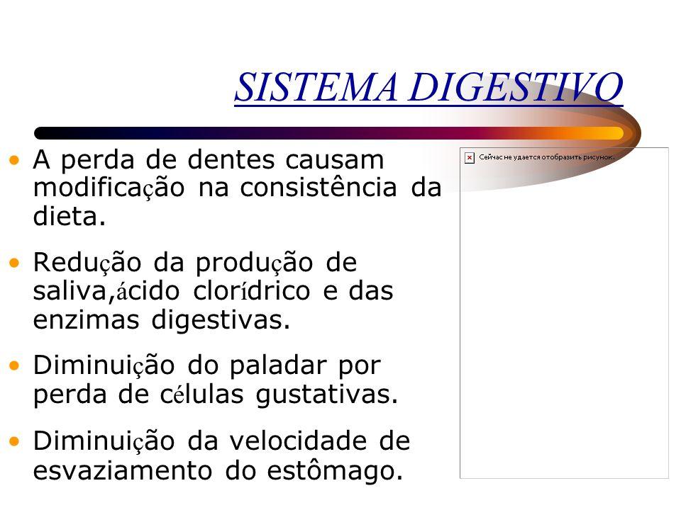 SISTEMA DIGESTIVO A perda de dentes causam modificação na consistência da dieta.