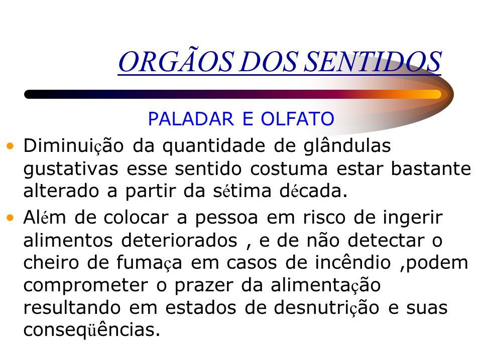 ORGÃOS DOS SENTIDOS PALADAR E OLFATO