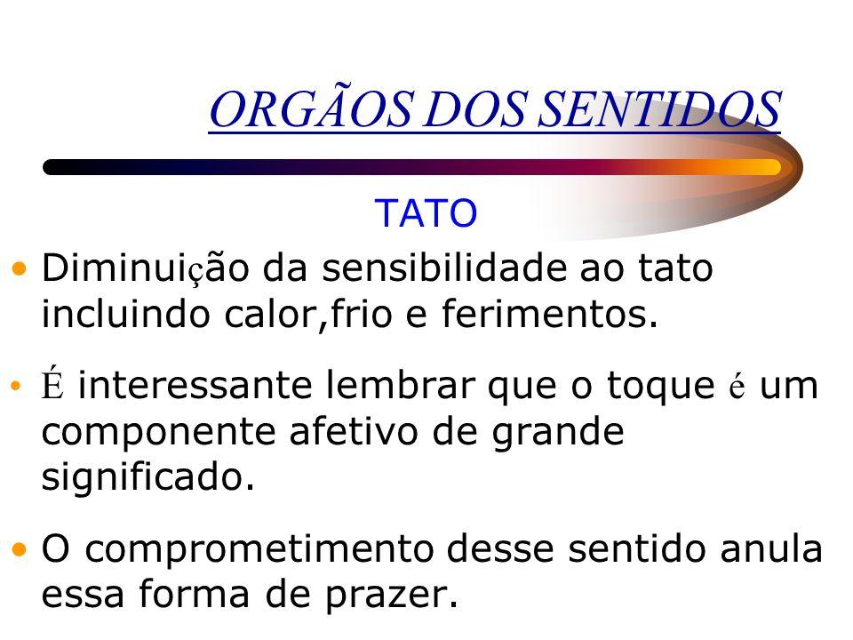 ORGÃOS DOS SENTIDOS TATO