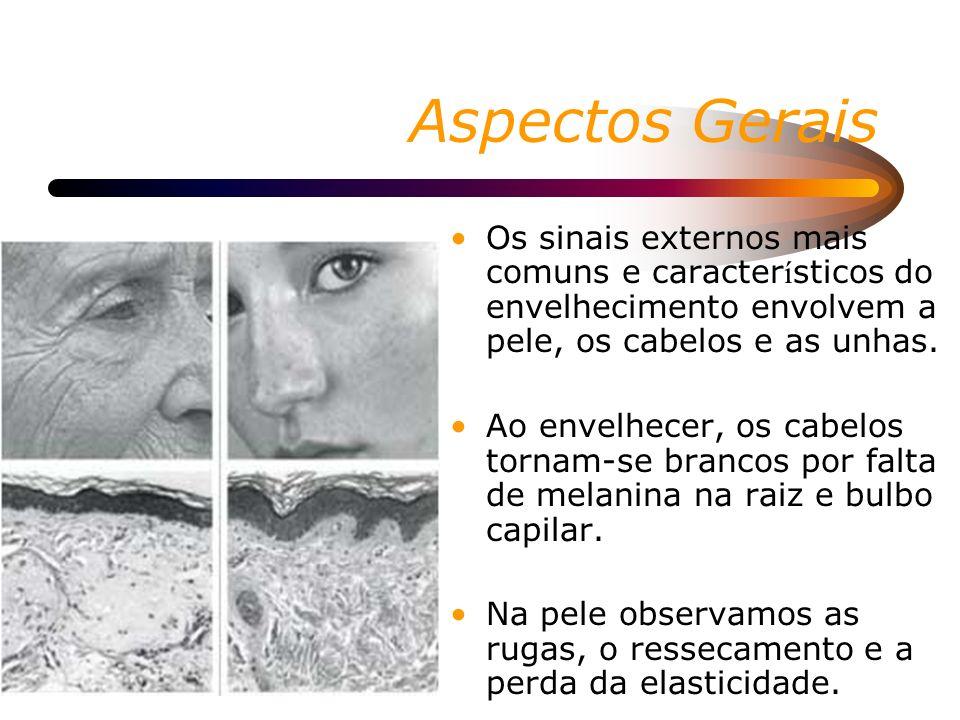 Aspectos GeraisOs sinais externos mais comuns e característicos do envelhecimento envolvem a pele, os cabelos e as unhas.