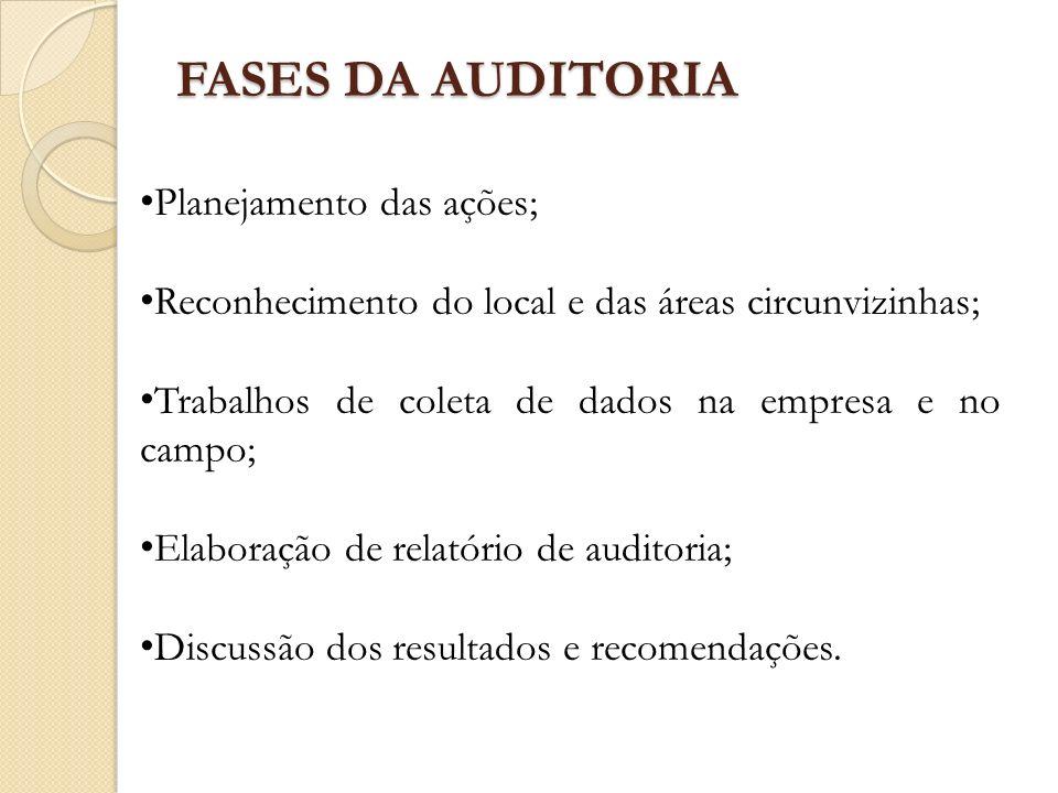 FASES DA AUDITORIA Planejamento das ações;