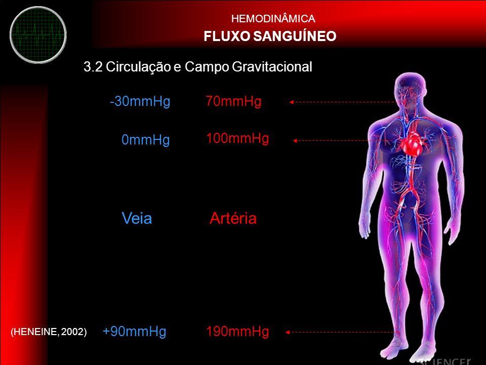 Veia Artéria FLUXO SANGUÍNEO 3.2 Circulação e Campo Gravitacional