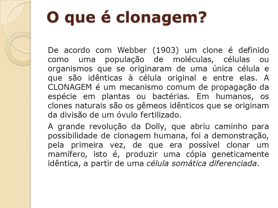 O que é clonagem