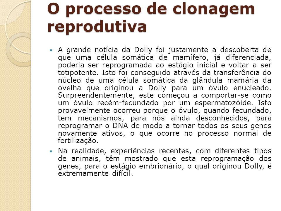 O processo de clonagem reprodutiva