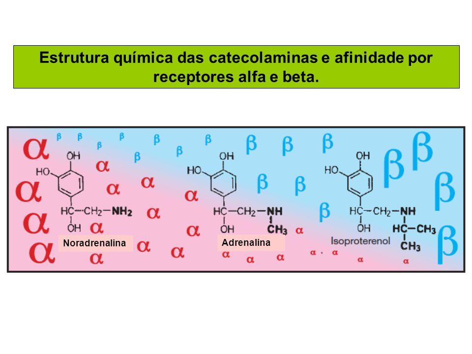 Estrutura química das catecolaminas e afinidade por receptores alfa e beta.