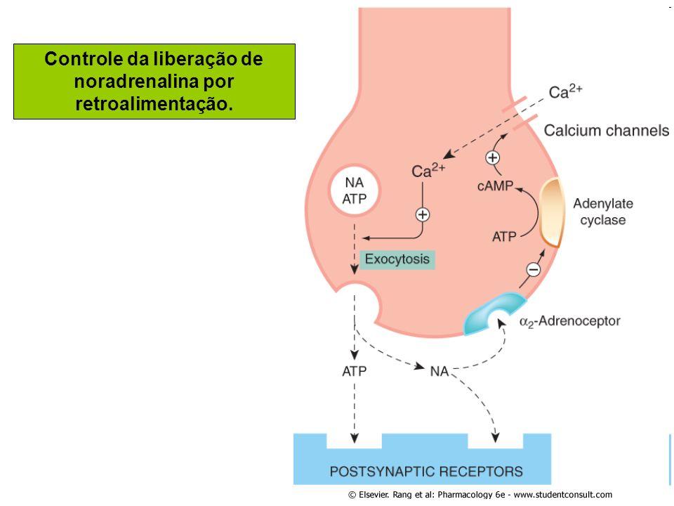 Controle da liberação de noradrenalina por retroalimentação.
