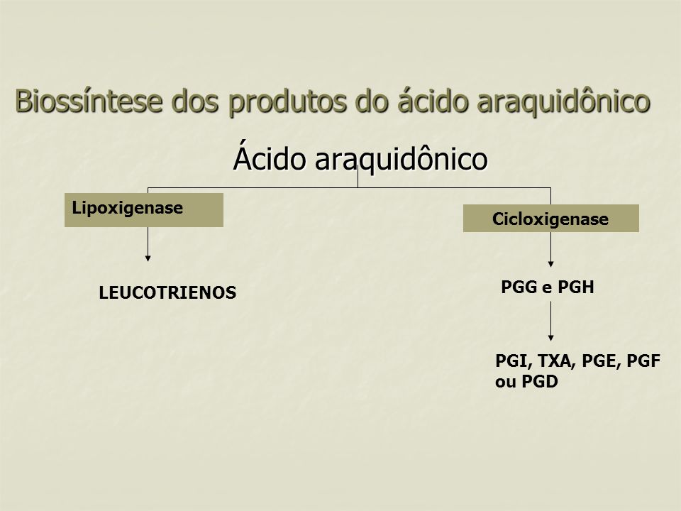 Biossíntese dos produtos do ácido araquidônico