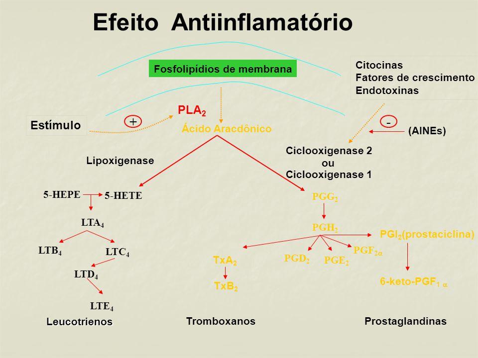 Efeito Antiinflamatório