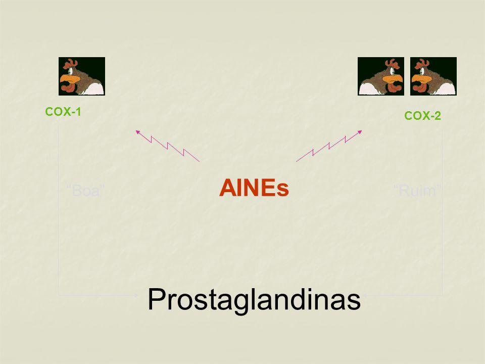 Prostaglandinas Boa AINEs Ruim COX-1 COX-2