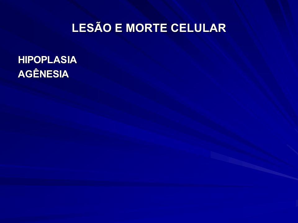 LESÃO E MORTE CELULAR HIPOPLASIA AGÊNESIA