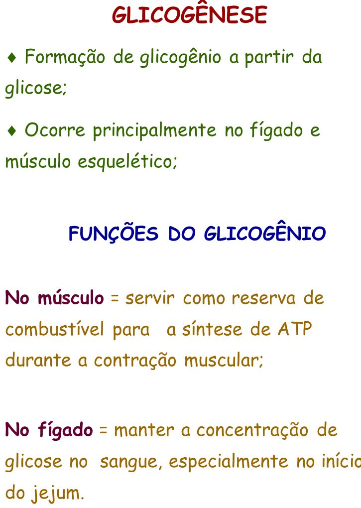 GLICOGÊNESE  Formação de glicogênio a partir da glicose;