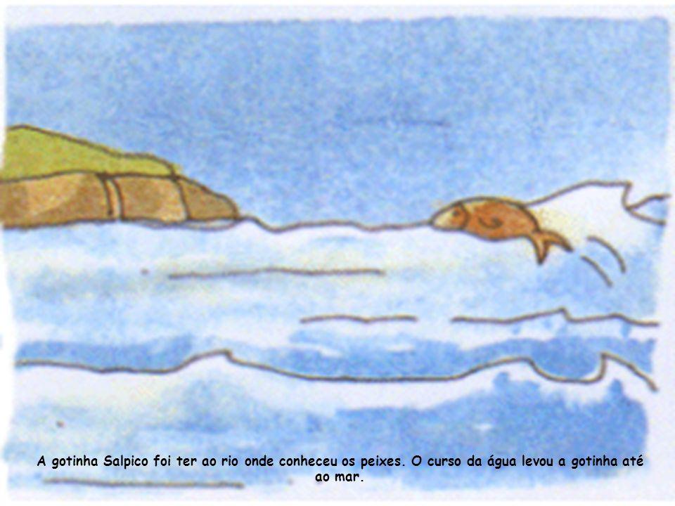A gotinha Salpico foi ter ao rio onde conheceu os peixes