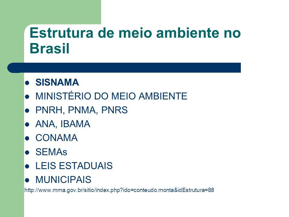 Estrutura de meio ambiente no Brasil