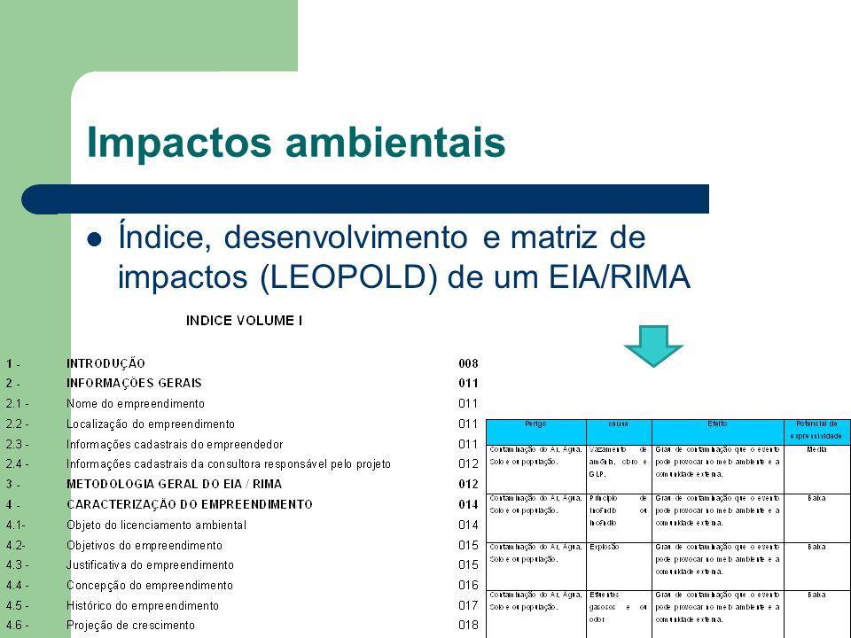 Impactos ambientais Índice, desenvolvimento e matriz de impactos (LEOPOLD) de um EIA/RIMA