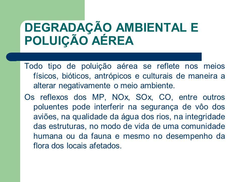 DEGRADAÇÃO AMBIENTAL E POLUIÇÃO AÉREA