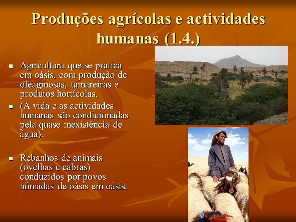 Produções agrícolas e actividades humanas (1.4.)