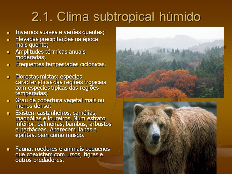 2.1. Clima subtropical húmido