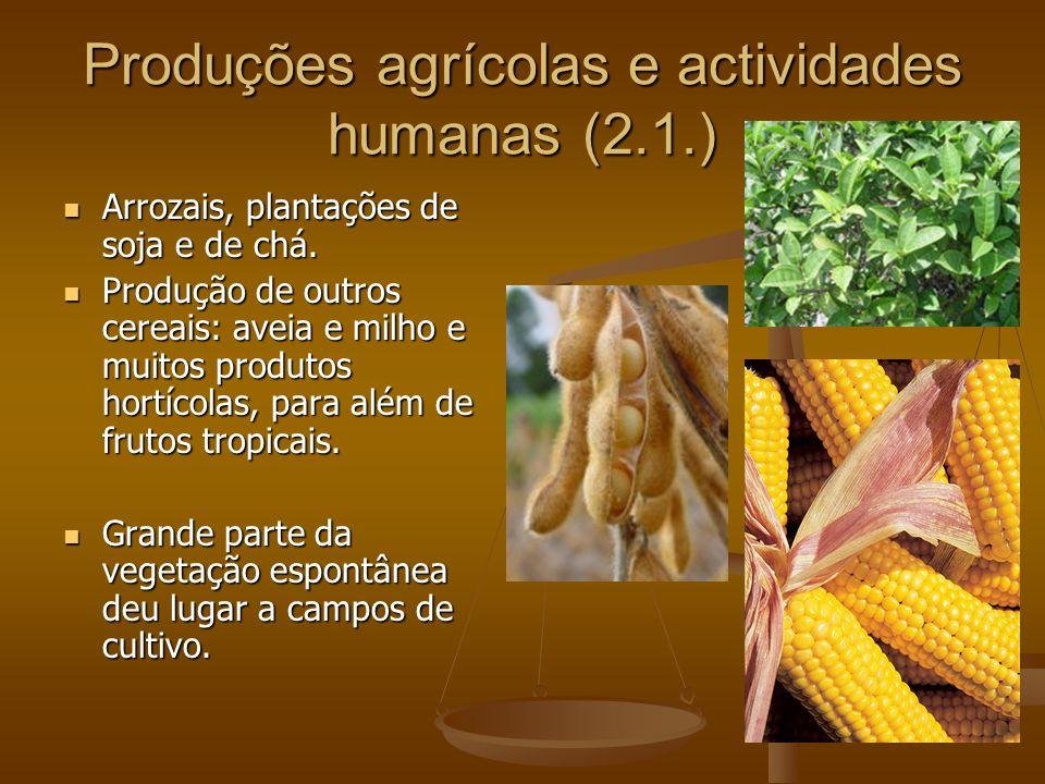 Produções agrícolas e actividades humanas (2.1.)