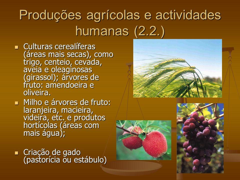 Produções agrícolas e actividades humanas (2.2.)