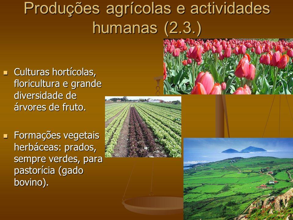 Produções agrícolas e actividades humanas (2.3.)