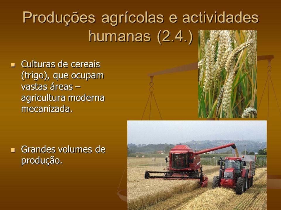 Produções agrícolas e actividades humanas (2.4.)