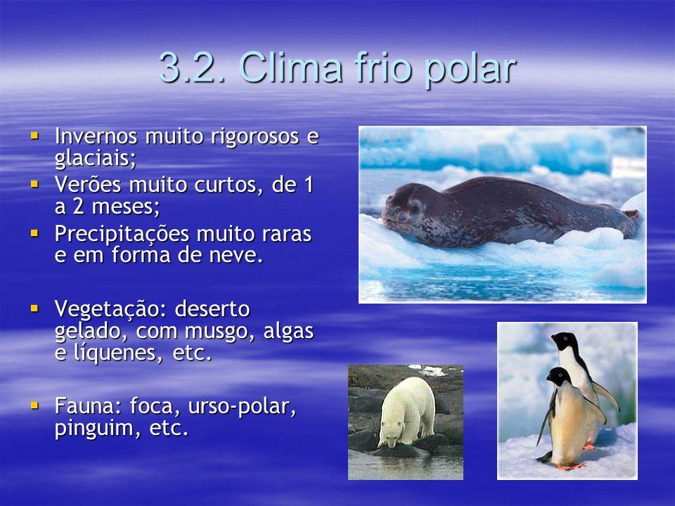 3.2. Clima frio polar Invernos muito rigorosos e glaciais;